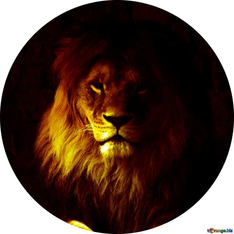 A lion hard dark circle frame №44974