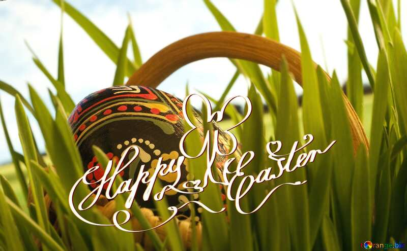 Cart  Passover  Rabbit happy easter №8133