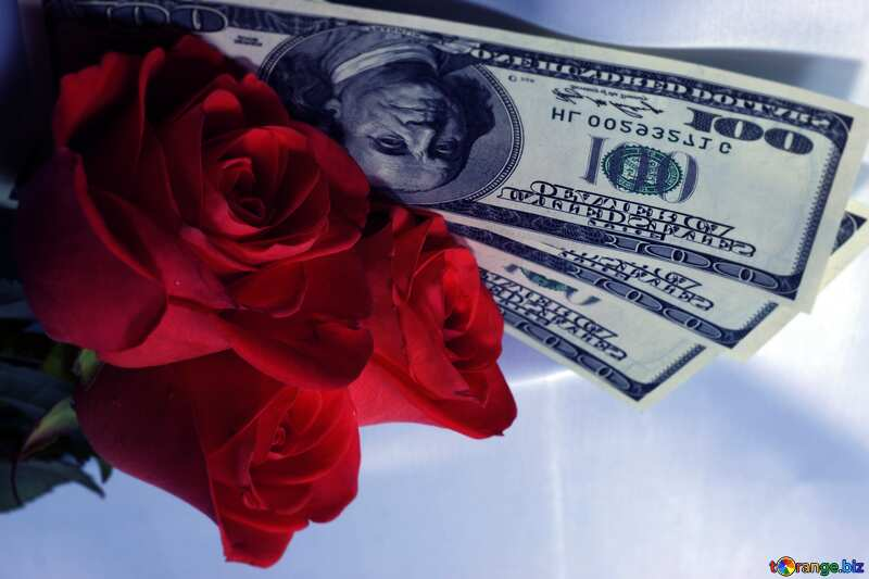 Roses  and  dollars. blue blur frame №7269