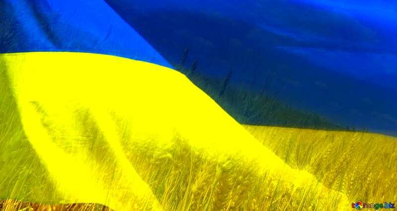 Ukraine Flag №33620