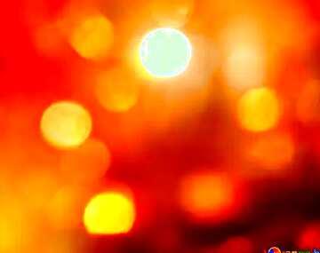 L'effetto della luce. I colori molto vivaci. Frammento.