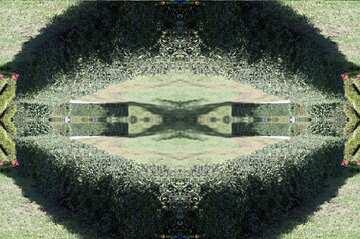 Die Wirkung der Rotation. Muster.