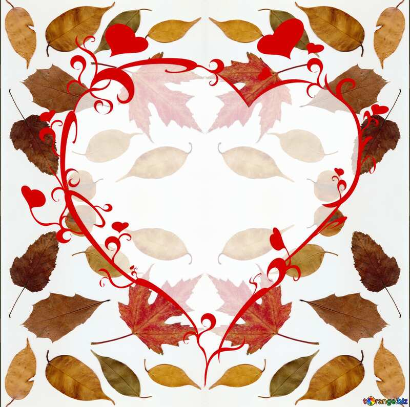 The best image. Autumn leaves on a white background. №47262