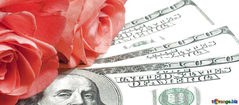 Cover. Roses  and  dollars.. №7269