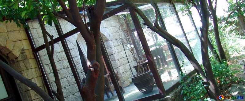 Cover. Winter  garden. №8548