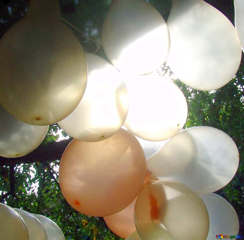 Image for profile picture Garland  of the  inflatable  balls. №5790