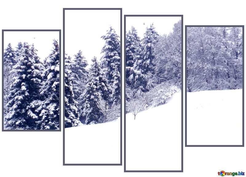 Snow  landscape  modular picture №10496
