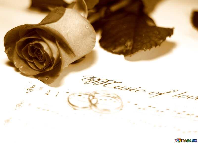 Vintage card rose rings music note №7230