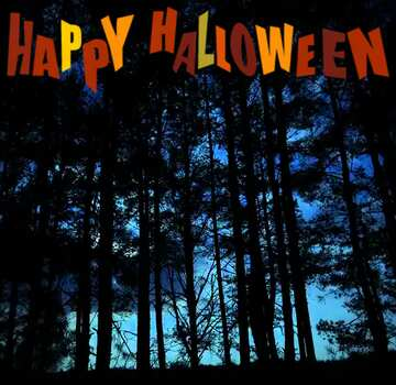 The effect of contrast. Very Vivid Colours. Fragment. Happy halloween.