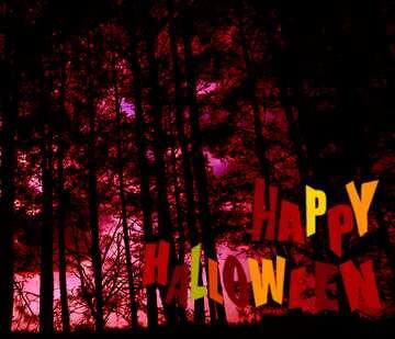 Fragment. Happy halloween.