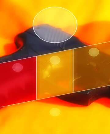 L'effetto di contrasto. I colori molto vivaci. Frammento.
