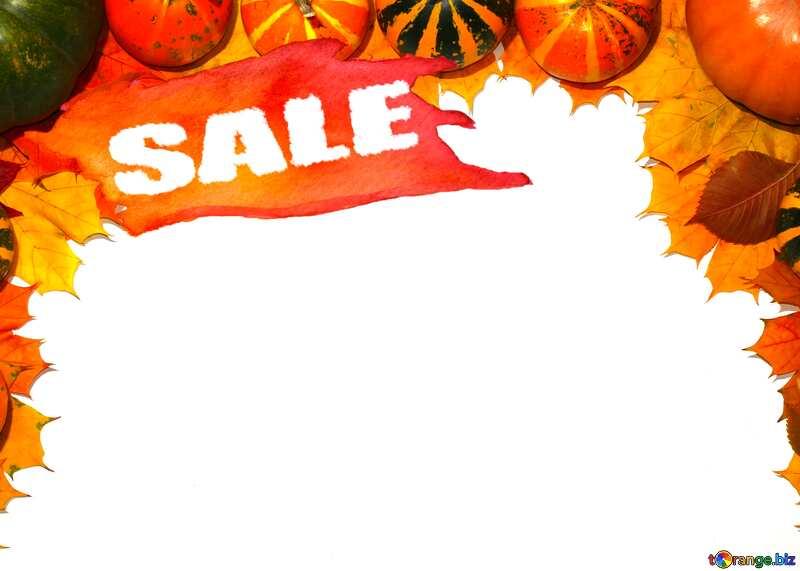 Autumn Sale blank card template with pumpkins template №35178