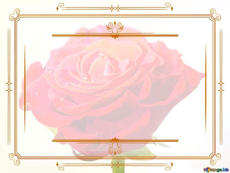 Vintage frame retro clip art rose flower №17125