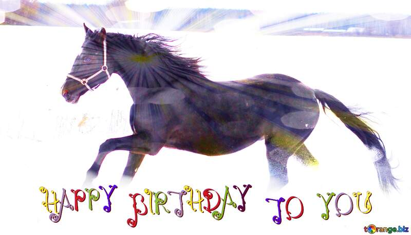 Horse and snow happy birthday card №18190