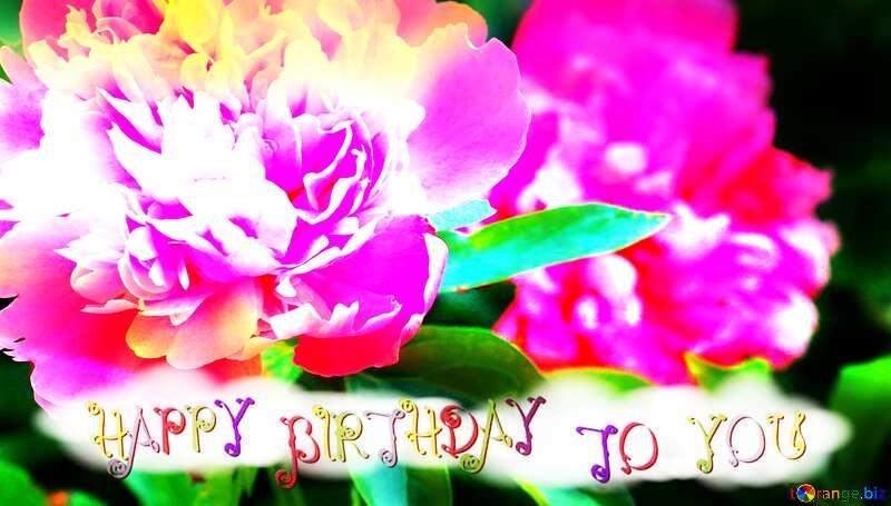 Flowers of peonies happy birthday №32639