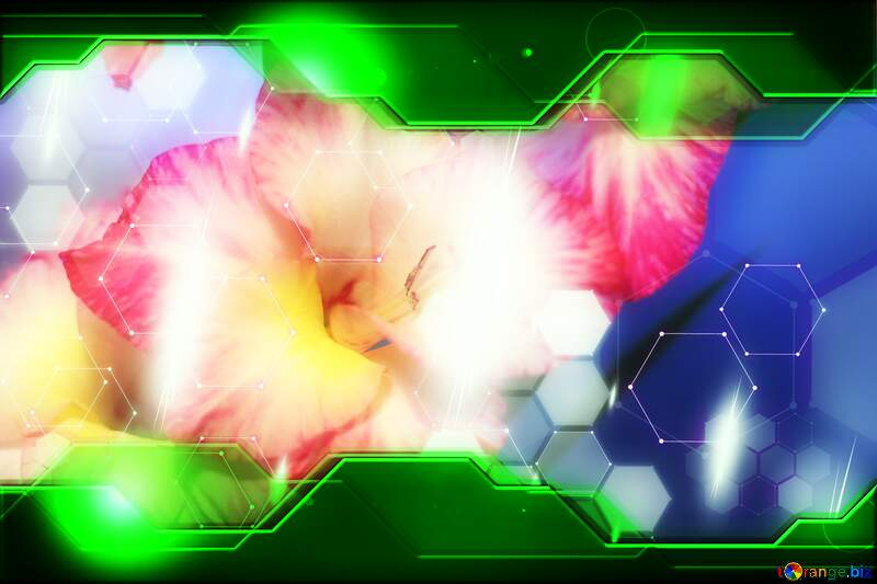 Pink and white flower with blue background Hi-tech Concept №50572