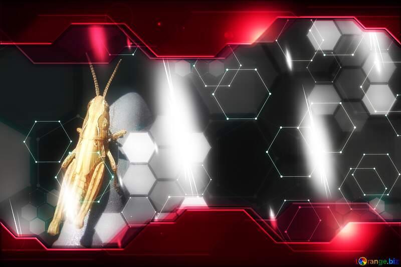 Grasshopper Technology business concept Hi-tech Elements red background №670