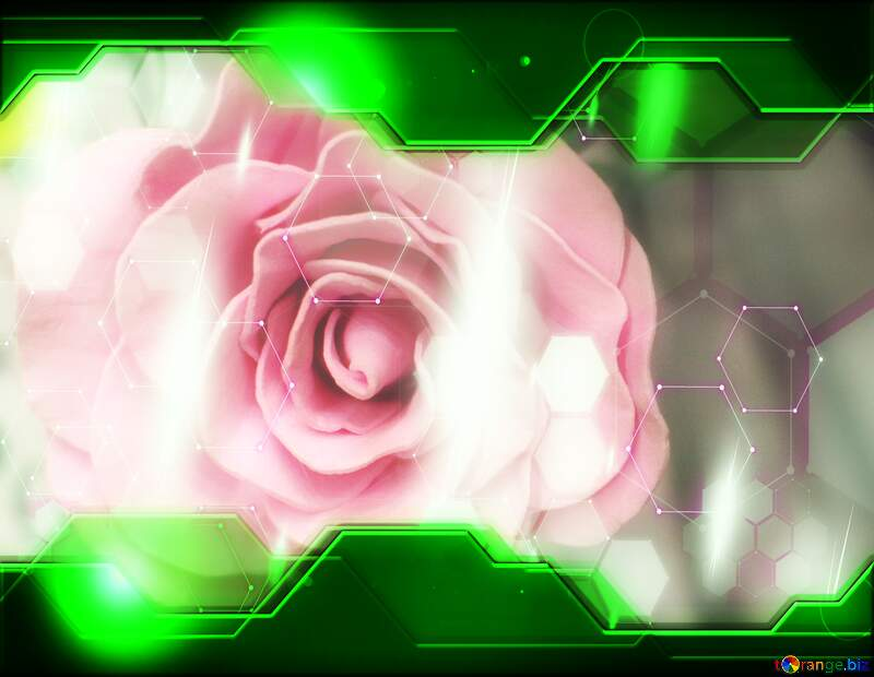 Beauty Rose Hi-tech Green Illustration №48638