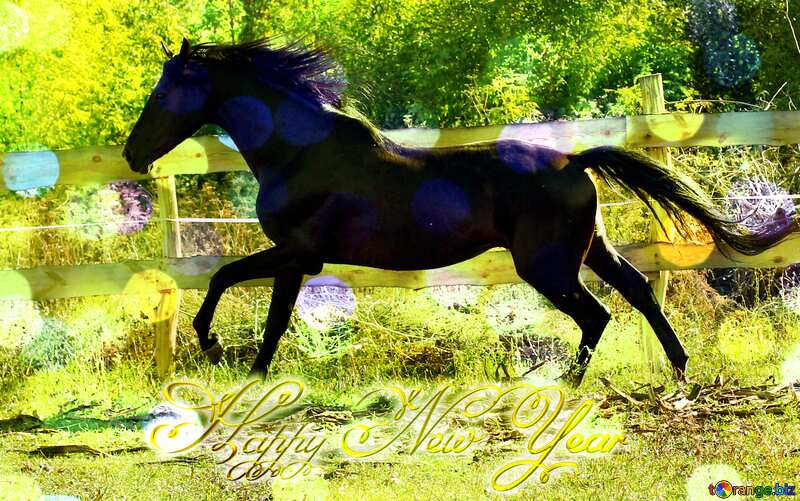 Black horse Happy New Year 3d gold №36651