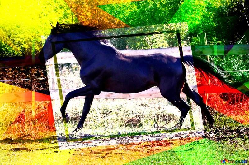 Black horse abstract geometrical creative future template №36651