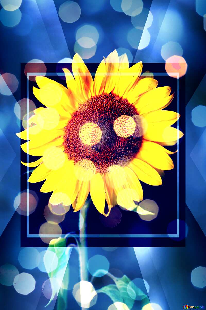 Sunflower design bokeh  background template №32797