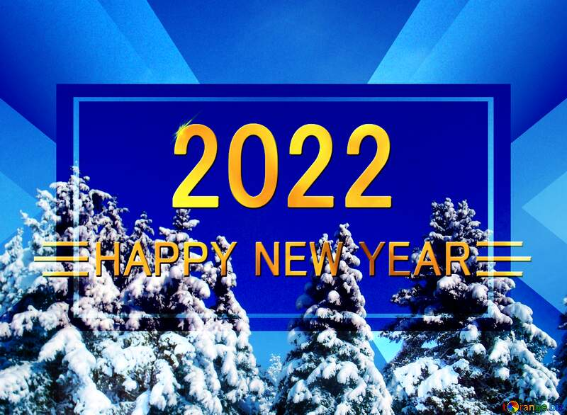 Christmas Forest Tree  Snow   happy new year 2022 background №10576