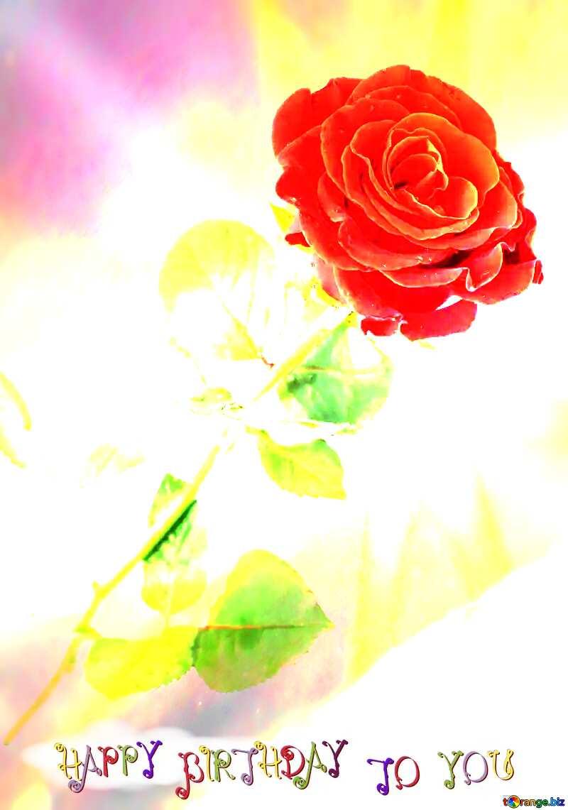 Red beautiful rose happy birthday card №16891