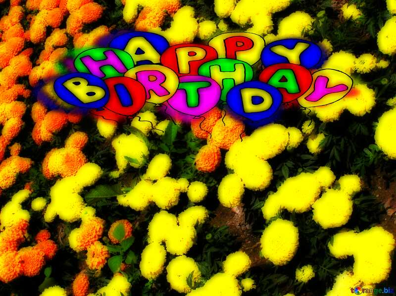 Fluffy yellow flowers Happy birthday. Drawing cartoon style Air Balloons card Greeting card №20697