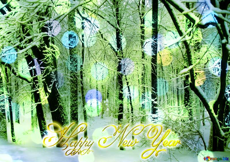 Winter  Forest  Happy New Year bright lights bokeh Christmas background №10505