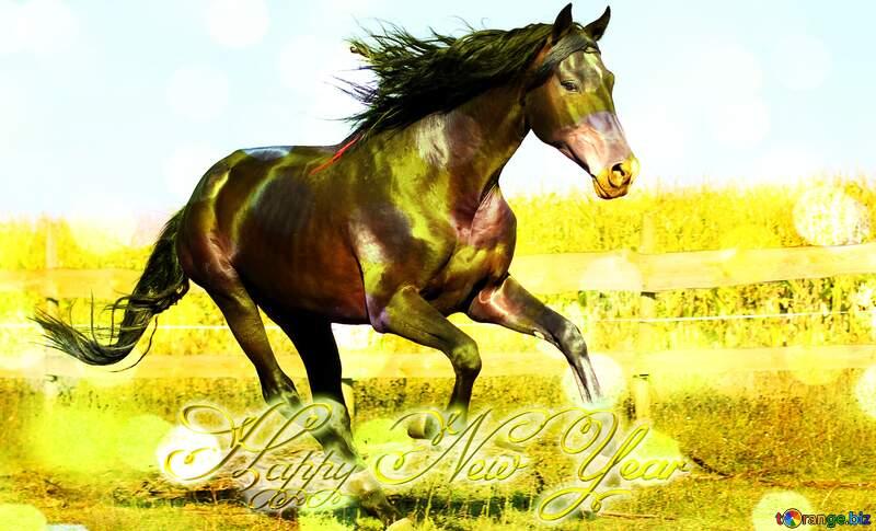 Horse Happy New Year №36664