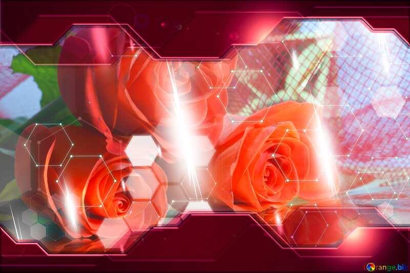 Bouquet  Roses Hi-tech №7265