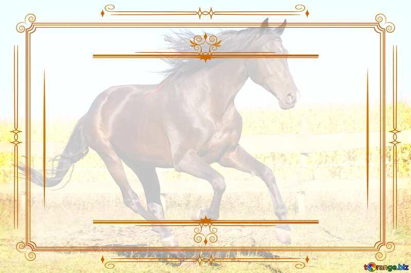 Horse Vintage frame №36664