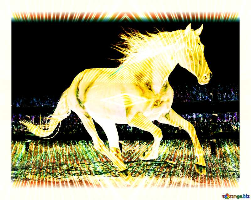Horse colored light lines curves lights art №36664