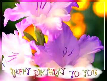 The effect of the dark. Very Vivid Colours. Blur dark frame. Happy Birthday card.