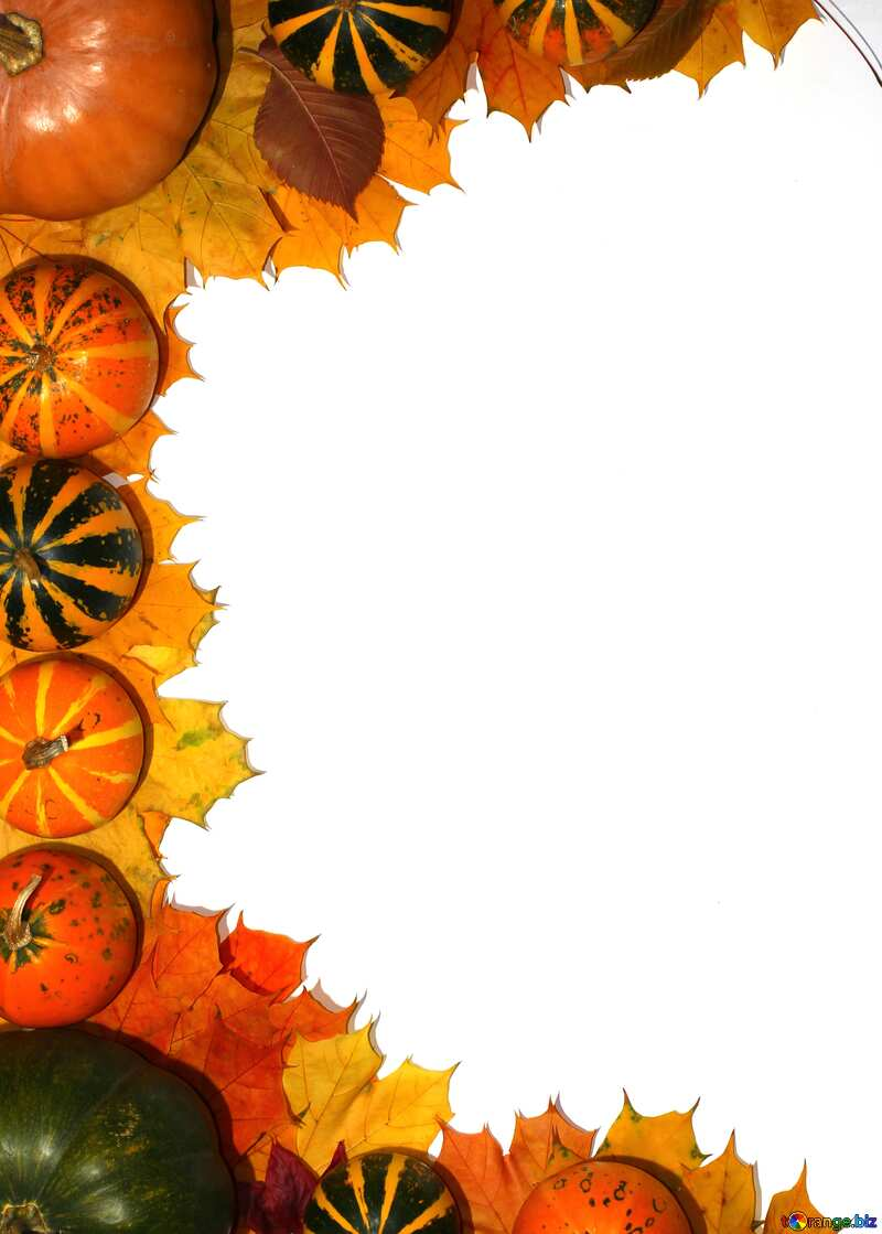 Autumn blank with pumpkins rotation left side №35178