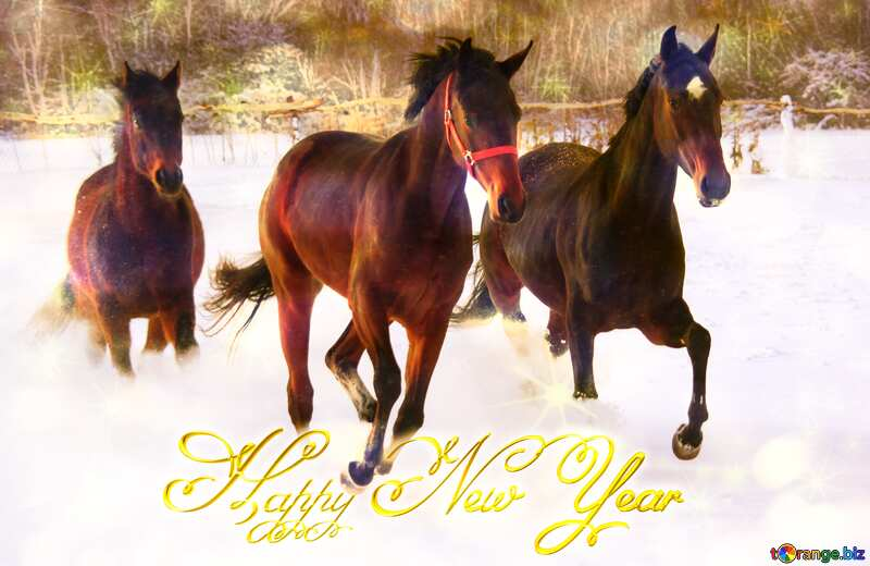 Happy New Year horses №3981