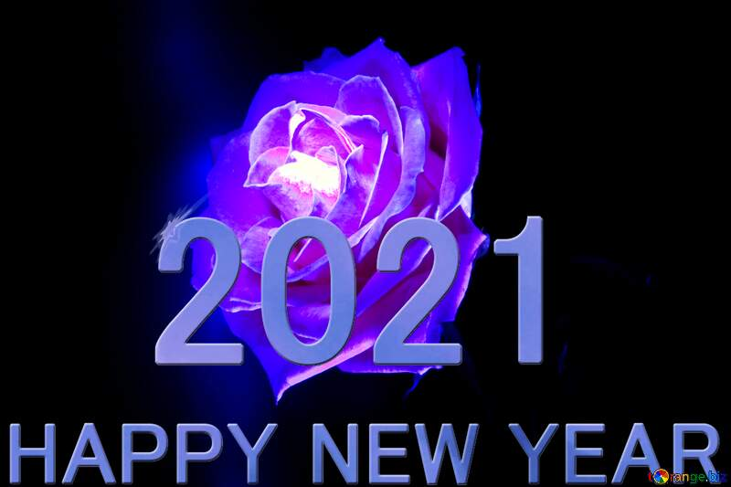 Blue Rose Happy New Year 2021 №1235