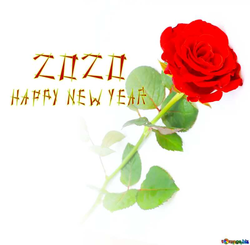 Red beautiful rose happy new year 2020 №16891