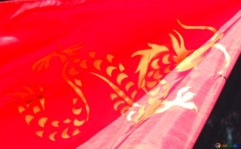 Chinese Dragon flag №40923