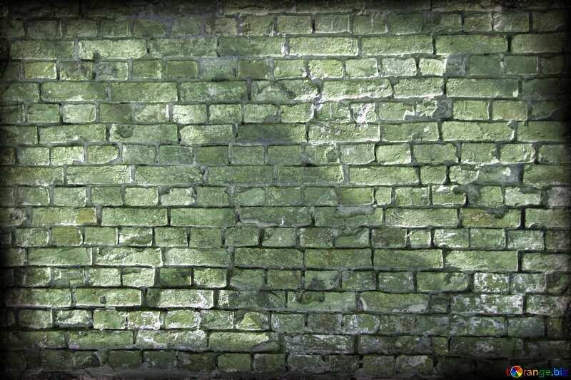 Green  wall №12758