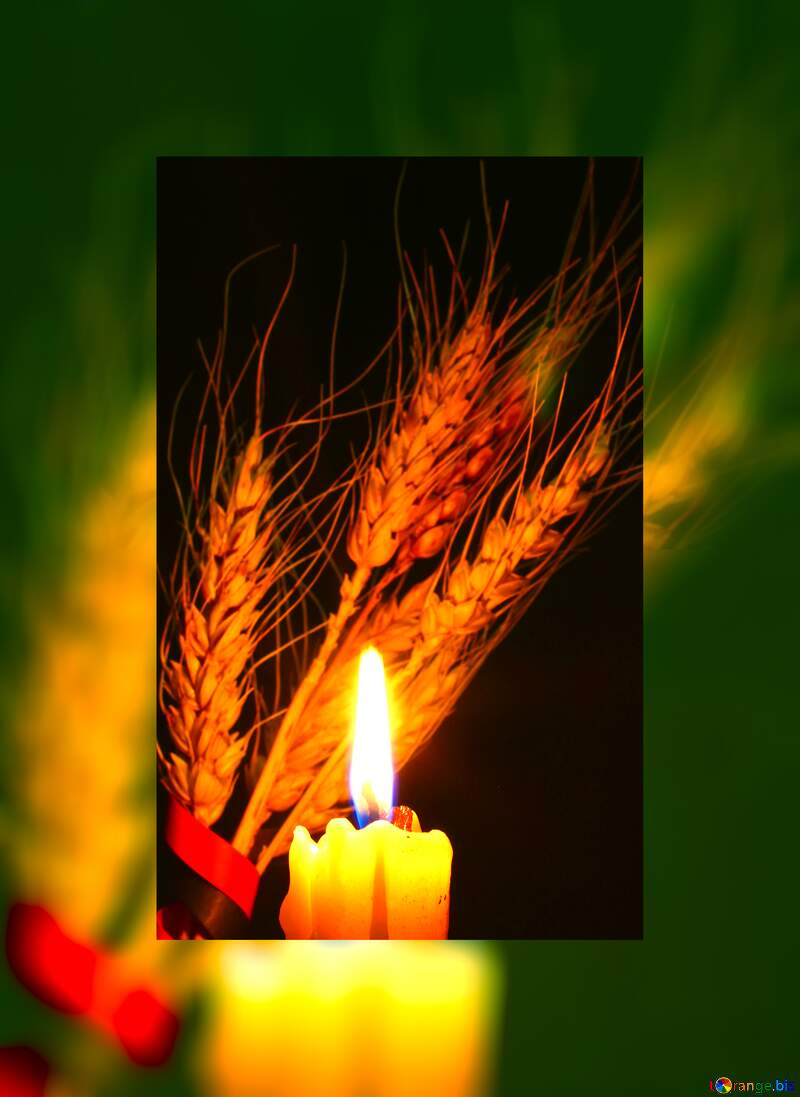 a candle flame lighting up wheat №37793