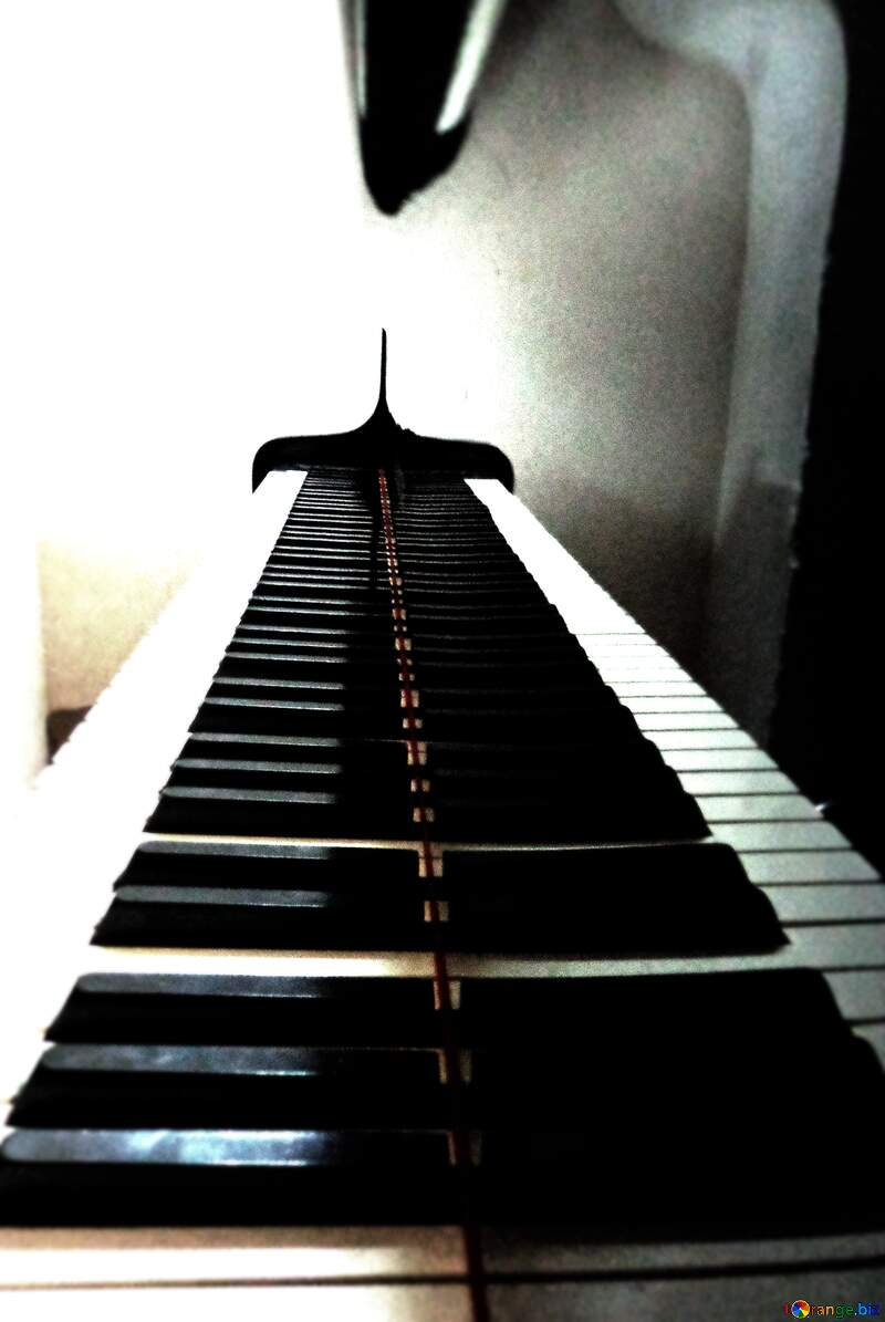 Piano keys №42949