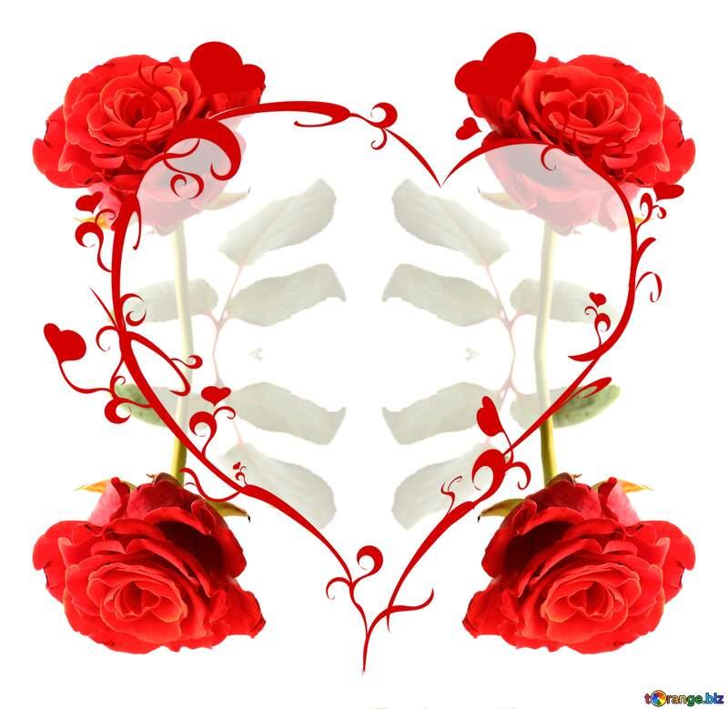 A rose flower  heart frame №17043