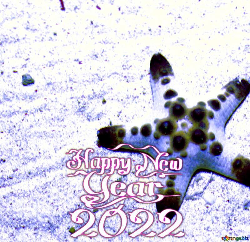 Starfish Happy New Year 2021 №53878