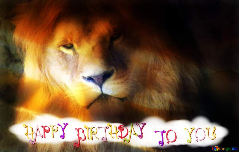 A lion Happy Birthday №44974