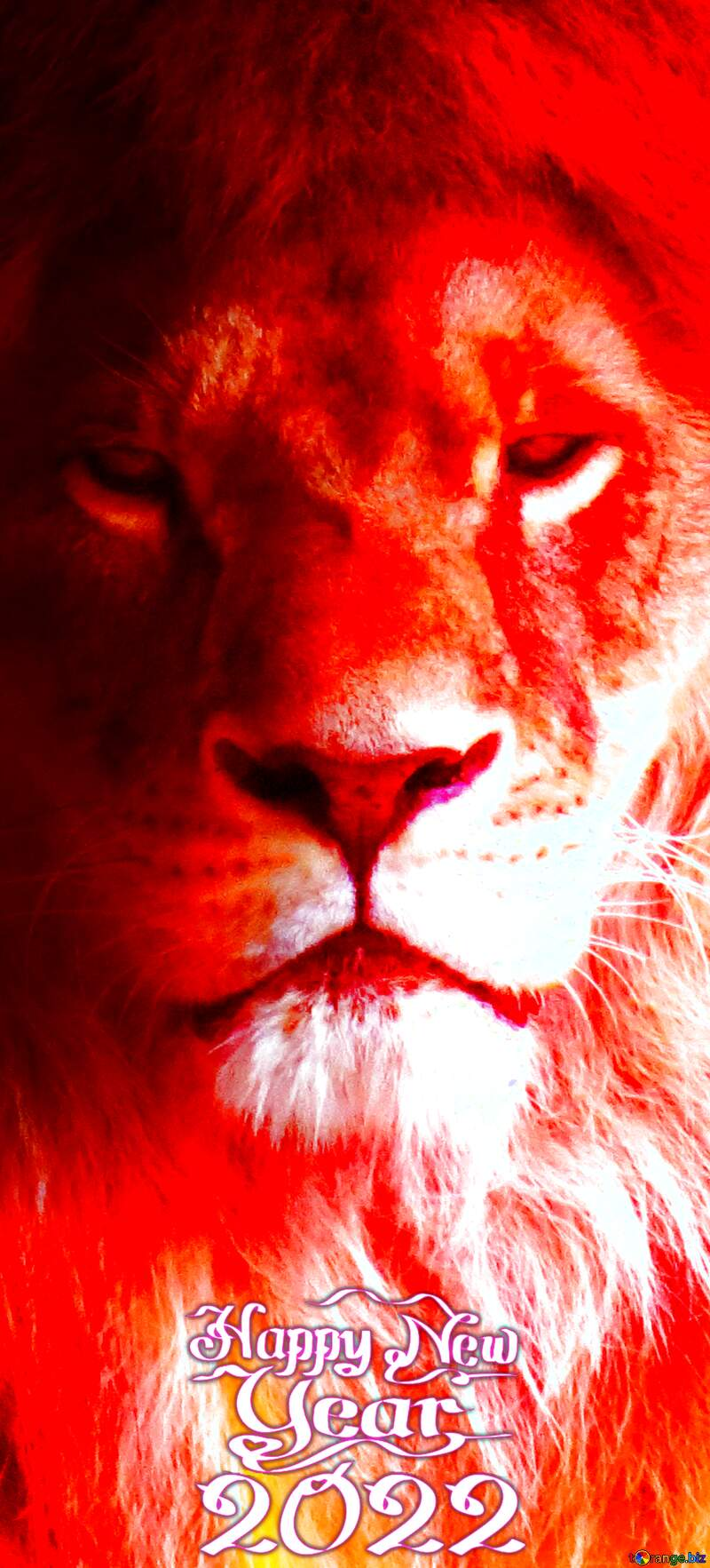 A Fire lion Happy New Year 2021 vertical banner background №44974