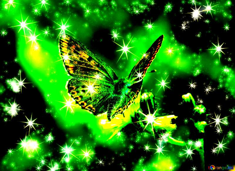 Flying butterfly background with clusters of bright twinkling stars №25913
