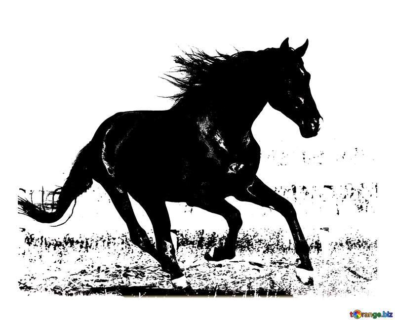 horse silhouette №36664