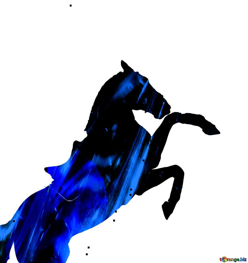 Silhouette of a horse blue lines  overlay №46154