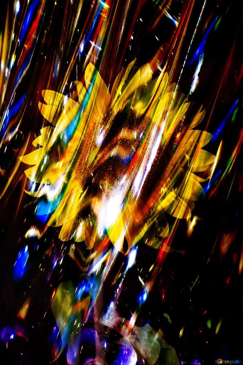 Sunflower black glass  background №32797